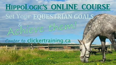 BANNER _Achieve Your Equestrian Goals & Achieve them