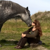 _HLhippologic_listening to your horse_clicker_training